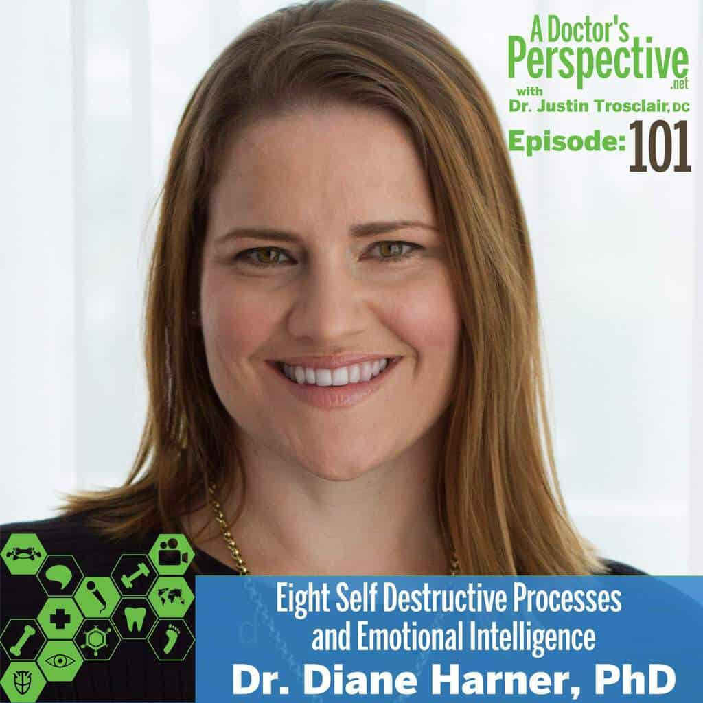 Diane Harner phd e 101 a doctors perspective podcast EI neuroscience stress