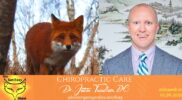 get foxy show chiropractic care dr justin trosclair