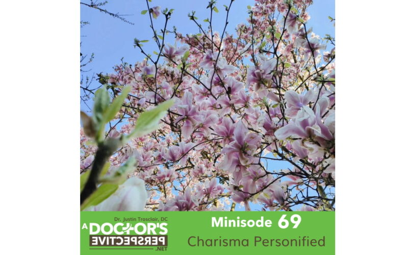a doctors perspective minisode 69 justin trosclair plum trees japan wide