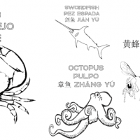 preview-of-trilingual-coloring-book-768x378